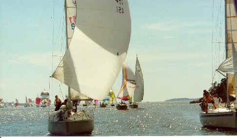 Bild på spinnakerbåtar